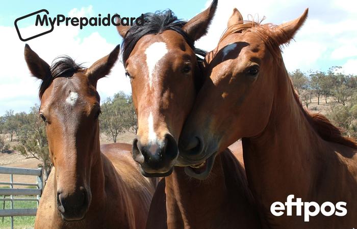 MyPrepaidCard Horses